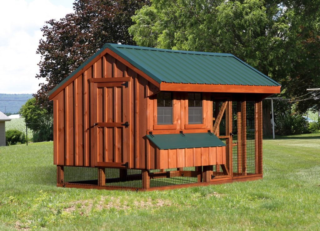 chicken coop and run q712c back bb 1600x1600